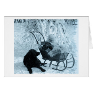 Vintage Stereoview  Baby in Sled and Black Dog Card