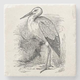 Vintage Stork Bird Personalized Storks Retro Birds Stone Beverage Coaster