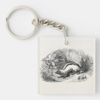 Vintage Striped Skunk 1800s Skunks Illustration Single-Sided Square Acrylic Keychain