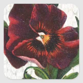 Vintage Style Red Pansy Square Sticker