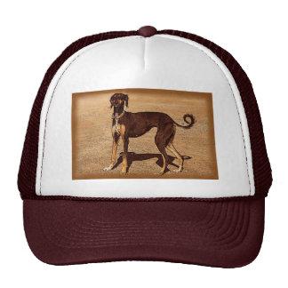 Vintage Style Saluki Trucker Hat