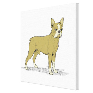 Vintage Stylized French Bulldog C Canvas Print