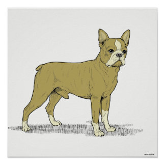 Vintage Stylized French Bulldog C Poster