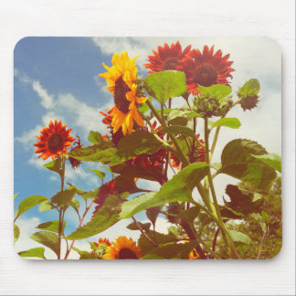 Vintage Summer Mousepad