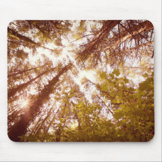 Vintage Summer Trees Mouse Pad
