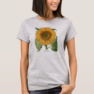 Vintage Sunflower Flower by Basilius Besler T-Shirt