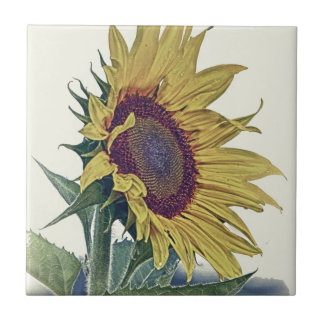 Vintage Sunflower Original Shabby Old School Look Tile