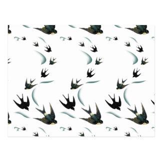 Vintage Swallow Birds Art Post Cards