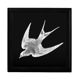 Vintage Swallow Illustration - 1800's Antique Bird Gift Box