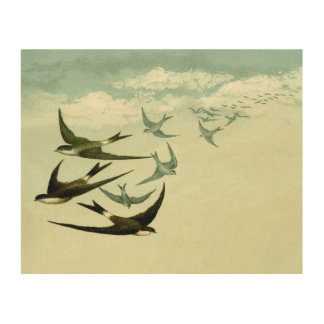 Vintage swallows wood print