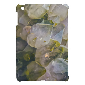 Vintage Swamp Crystals iPad Mini Cover