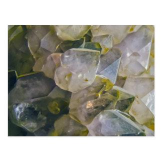 Vintage Swamp Crystals Postcard