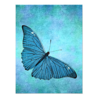 Vintage Teal Blue Butterfly 1800s Illustration Photo Art