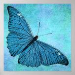 Vintage Teal Blue Butterfly 1800s Illustration Poster