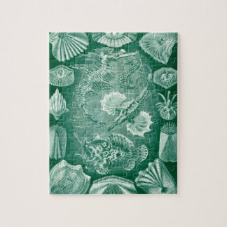 Vintage Teleostei Fish and Shells by Ernst Haeckel Jigsaw Puzzle