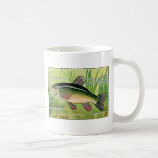 Vintage Tench Fish Print Mugs