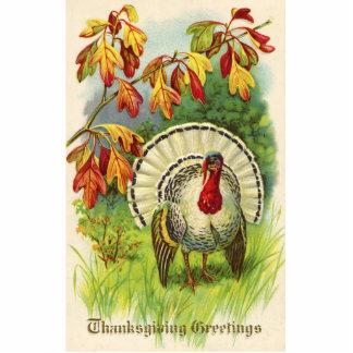 Vintage Thanksgiving Turkey Photo Sculpture Ornament