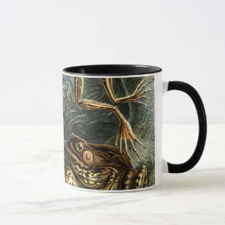 Vintage Toads and Frogs Batrachia by Ernst Haeckel Mug