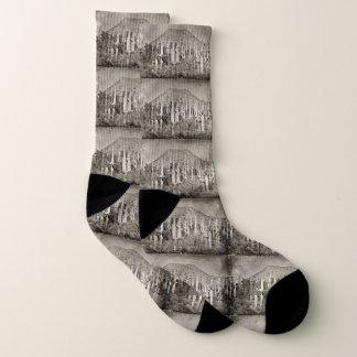 Vintage Tonto Saguaro Unisex Socks