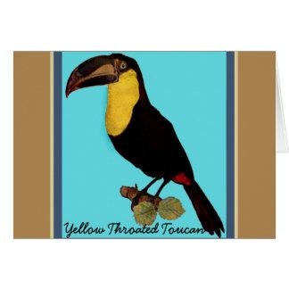 VINTAGE TOUCAN BIRD. YELLOW-THROATED TOUCAN CARD