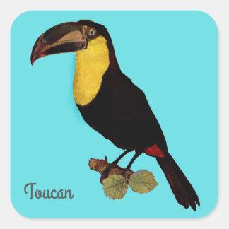 VINTAGE TOUCAN BIRD YELLOW-THROATED TOUCAN STICKER