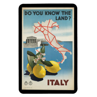 Vintage Travel Italy Map with Lemons Magnet