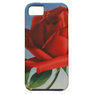 Vintage Travel Montreux Switzerland Case For The iPhone 5