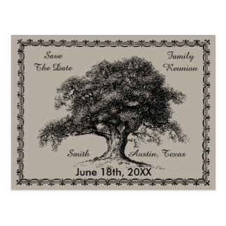 Vintage Tree Outdoor Rustic Family Reunion Postcard