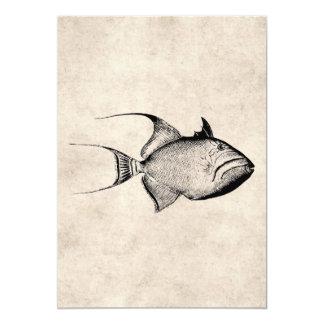 Vintage Trigger Fish Antique Hawaiian Print Card