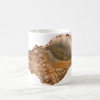 Vintage Triton Seashell Shell, Marine Ocean Animal Coffee Mug