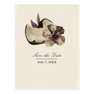 Vintage Tropical Coconut & Hibiscus Save the Date Postcard