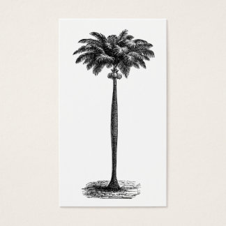 Vintage Tropical Island Palm Tree Template Blank Business Card