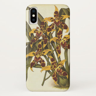 Vintage Tropical Odontoglossum Orchid Flowers iPhone X Case