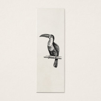 Vintage Tropical Toucan Bird Illustration Template Mini Business Card