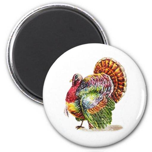 Vintage Turkey Magnet