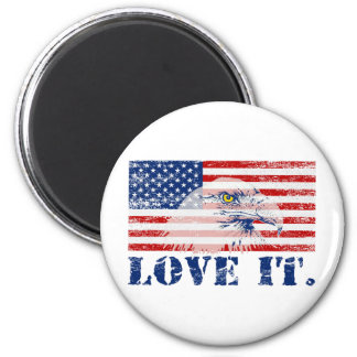 Vintage US Flag & Eagle LOVE IT Magnet