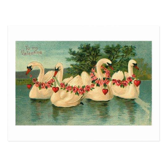 Vintage Valentine Swans Postcard