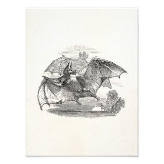 Vintage Vampire Bats Personalized Retro Bats Photo Art