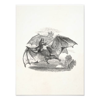Vintage Vampire Bats Personalized Retro Bats Photo Print