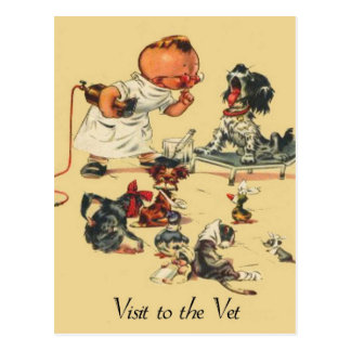 Vintage Veterinarian Visit to the Vet Postcard