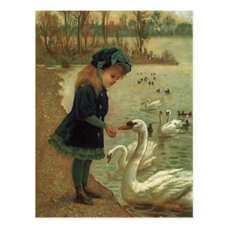 VINTAGE VICTORIAN Feeding Trumpeter Swans POSTCARD