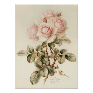 Vintage Victorian Romantic Roses Poster
