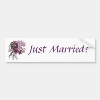 Vintage Violets Just Married Bumper Sticker