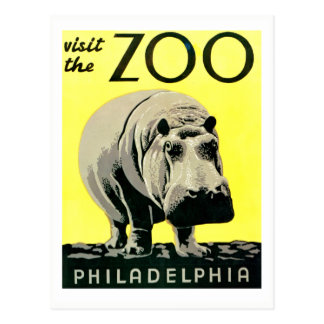 Vintage Visit the Zoo Philadelphia Hippo Postcard
