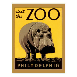 Vintage visit Zoo Philadelphia, hippopotamus Postcard