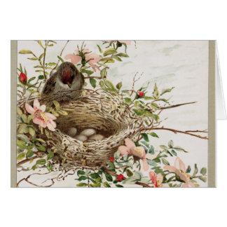 Vintage Watchful Bird Card