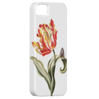 Vintage Watercolor Tulip Butterfly | Garden iPhone 5 Covers