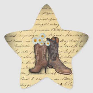 vintage western country cowboy wedding star sticker