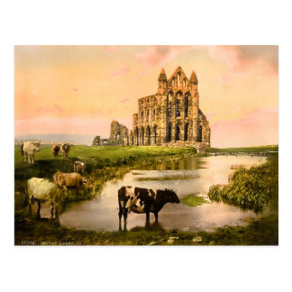 Vintage Whitby Abbey Yorkshire England Postcard