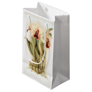 Vintage white cattleya dowiana orchid gift bag